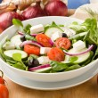 Greek Salad — Stock Photo #5338315