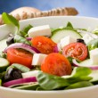 Greek Salad — Stock Photo #5338344