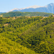 Pirin Mountain Panorama — Stock Photo