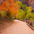 Zion Canyon Trail with Foliage Motion Blur — Zdjęcie stockowe