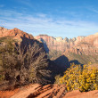 Stock Photo: Zion Canyon Overlook