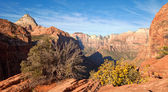 Zion Canyon Overlook — Stock Photo