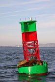 Sea Lions on a Buoy — Stock Photo