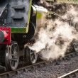 Steam train — Stock Photo #4371589