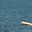 Small boat — Stock Photo #4418731