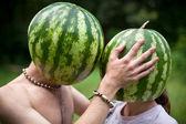 Watermelons love — Stock Photo
