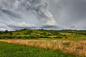 Field and stormy skies — Stock Photo