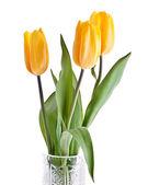 Boeket Gele tulpen — Stockfoto