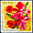 Post stamp with tropical flowers — Stok fotoğraf