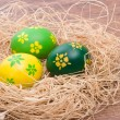 Hand painted Easter eggs — Foto de Stock
