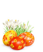 Easter eggs and flowers — Stockfoto