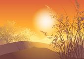 Ağaç sunset — Stok Vektör