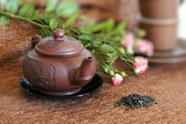 Green tea pot — Stock Photo