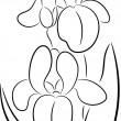 Royalty-Free Stock Imagen vectorial: Iris Flower