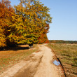 Autumnal landscape — Stock Photo #4169425