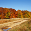 Autumnal landscape — Stock Photo