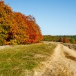Autumnal landscape — Stock Photo #4169437