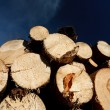 Logs against blue sky — Stock Photo #4208262