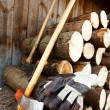 Axe, protective gloves and stack of logs — Stock Photo #4254005