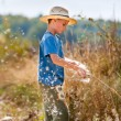 Stock Photo: Child playing with bulrush