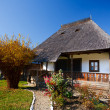 Traditional Romanian house - see the whole series — Stock Photo #4361942