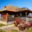 Traditional Romanian house - see the whole series — Stock Photo