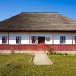 Traditional Romanian house - see the whole series — Stock Photo #4361980