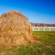 Stock Photo: Hay stack on meadow