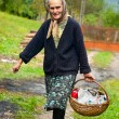 Rural woman with basket outdoor - Zdjęcie stockowe