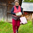 Old rural woman with pumpkin outdoor - Stock Photo