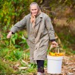 Rural old woman with a bucket of corn — Stock Photo