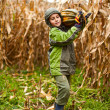 Cute little boy carrying big pumpkin — Stock Photo #4387493