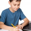 Schoolboy at the laptop — Stock Photo #5132241