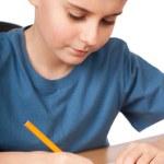 School child doing homework — Stock Photo #5132259