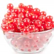 Red currant — Stock Photo #5132277