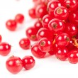 Red currant — Stock Photo #5132278
