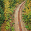 Railway in forest — Stock Photo