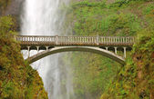 Multnomah Falls — Photo