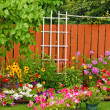 Stock Photo: Colorful backyard garden