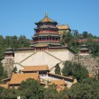 Постер, плакат: The Summer Palace