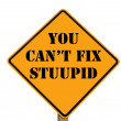 Road sign stating you can't fix stupid — Stock Photo