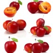 Stock Photo: Cherry-plum