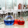 Laboratory beakers with the coloured liquid — Stock Photo