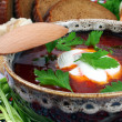 Ukrainian borsch — Stock Photo #5336647