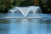 Fountain on a pond — Stock Photo