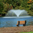 Fountain on pond with park bench — Stock Photo #4600386