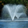 Stock Photo: Fountain on pond