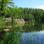 Lake landscape — Stock Photo #4161459