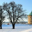 Foto Stock: Landscape with tower of Oslo Fortress