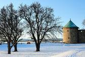 Paisagem com a fortaleza da torre de oslo — Fotografia Stock